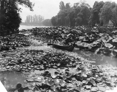 Echo Park Lake in 1929.