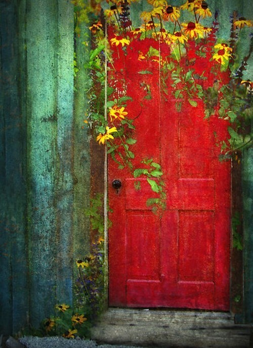 iffranco:  what a lovely door!!!
