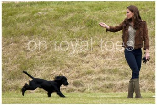 thecambridges:  Hey pretty miss! Lupo's growing up, isn't he?  If you think that's great just wait until the end of the match. I'll show you just how great I look. But I have to go now, Mummy says I need to be watching the match and not be on her phone.