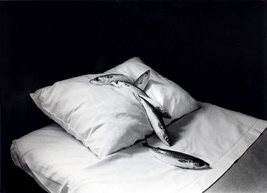 stilllifequickheart:  Michiko Kon Mackerel and Pillow 1979