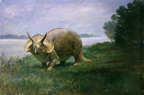 "paleoillustration:  Triceratops by Charles R. Knight. ""Charles R. Knight (1874-1953) may be the most famous of all paleontological illustrators. This painting of the museum's Triceratops was commissioned by the Smithsonian and completed in 1901. In 1905, the Smithsonian Institution mounted the world's first skeletal reconstruction of Triceratops for exhibition. The mount was a composite of sixteen individual skeletons of Triceratops as no single skeleton was complete. This painting received a USNM catalog number, usually reserved only for the specimen collection."""