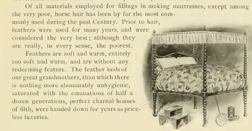 "~ ""The Test of Time"" Ostermoor Mattress Company Catalog, 1904(click to enlarge)""The feather beds of our great grandmothers…perfect charnal houses of filth"""