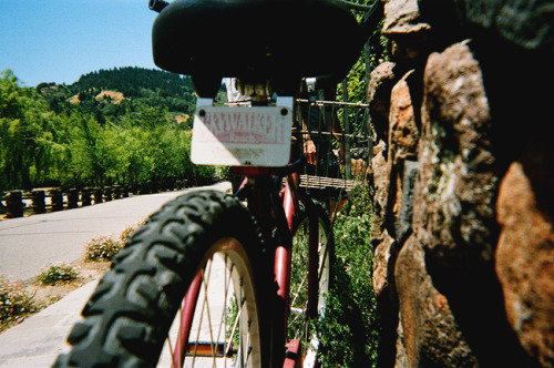 Skyride disposable 35mm Skywalker Ranch, CA 2012