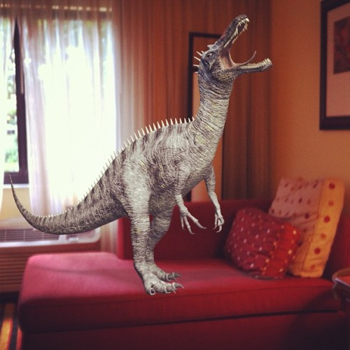Nobody told me there would be a baby Suchomimus on the fainting couch!  (Taken with Instagram)