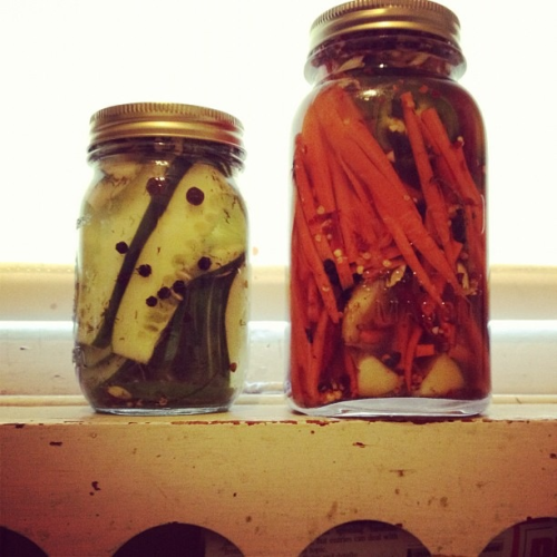 WE PICKLED THINGS.