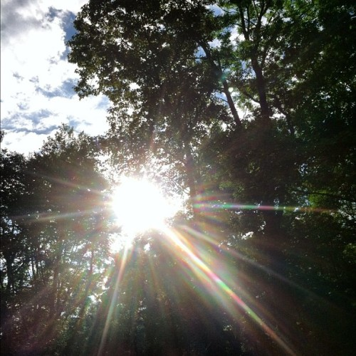 Glorious #sunday in #nwct! #nofilter  (Taken with Instagram)