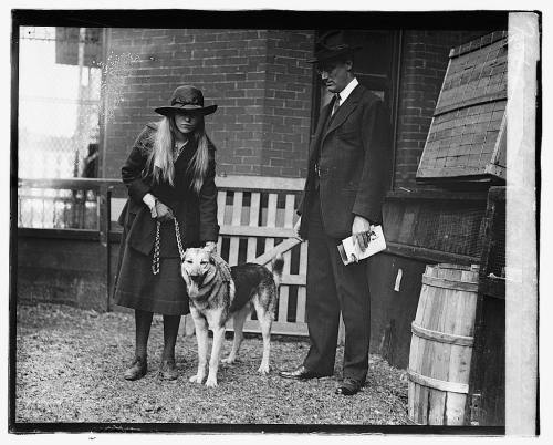 "Anna Roosevelt, German Shepard ""Chief of the Mohawk,"" and Franklin Roosevelt at the seventh annual dog show of the Washington Kennel Club, 1920. In addition to working in public relations and journalism, Anna served as an aide to her father, accompanying him to the Yalta Conference in 1945.  During JFK's administration, Anna served on both the Citizen's Advisory Council on the Status of Women and the President's Commission for the Observance of Human Rights."