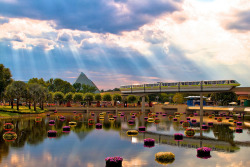 Now arriving…me for Monorail Monday. by Larry White (Trying_to_Shine) on Flickr.