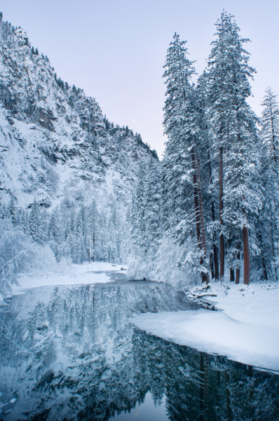 treeporn:  woodendreams:Molly Wassenaar)  [River flowing through a very snowy landscape of trees and mountains.]