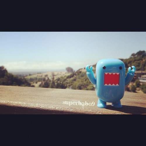i'm the #Domo of the world!!!! #toys #toyplanet #toyplanetpics #toyrevolution #toyrevolution #toycrewbuddies #superbabo (Taken with Instagram)