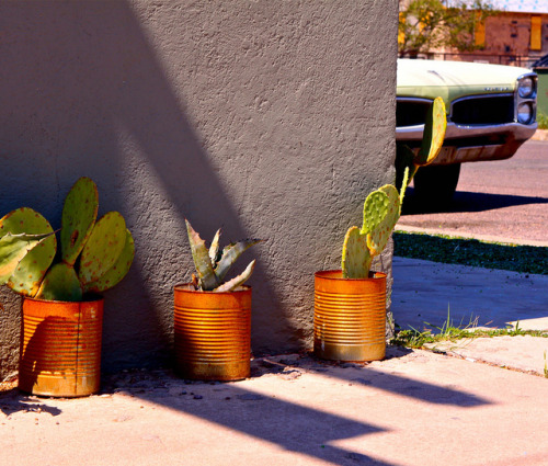 tortugajoe:  Marfa, Texas by isitso2010 on Flickr.