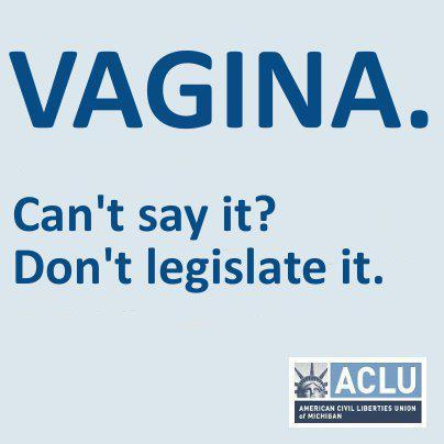 "stfuprolife:  VAGINAS TAKE BACK THE CAPITOL!  MONDAY 5 pm - 8 pm   Michigan Capitol Building - 100 North Capitol Ave (btw.West Allegean & West Ottawa)   5PM gathering / 6PM show!!  EVE ENSLER is flying to Michigan to take back the capitol with a special performance of The Vagina Monologues, starring Eve herself, along with your favorite legislators!So far, the cast includes Eve Ensler, along with:Rep. Lisa Brown (D-West Bloomfield)Sen. Rebekah Warren (D-Ann Arbor)Sen. Gretchen Whitmer (D-East Lansing)Rep. Barb Byrum (D- Onondaga)Rep. Stacy Erwin Oakes (D-Saginaw)Rep. Dian Slavens (D- Canton Township)Rep. Rashida Tlaib (D- Detroit)Rep. Vicki Barnett (D-Farmington Hills)Rep. Joan Bauer (D-Lansing)Rep. Ellen Cogen Lipton (D-Huntington Woods)Rep. Maureen Stapleton (D-Detroit)…with more to be announced soon!    RSVP TO THE EVENT  I think…it's cool that everyone's being all sassy about this whole ""vagina"" issue, and I'm digging the fact they got a bunch of legislators in on it, but can someone explain to me the point of this event?"