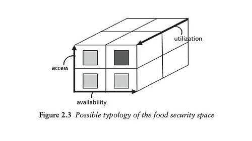 Possible typology of the food security space. Published in Food Security and Global Environmental Change, edited by John Ingram of the University of Oxford, Polly Ericksen of the International Livestock Research Institute (ILRI) and Diana Liverman of the University of Oxford, Earthscan, 2010.