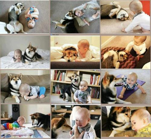 best friends - I think its so important for a baby to grow up with a dog