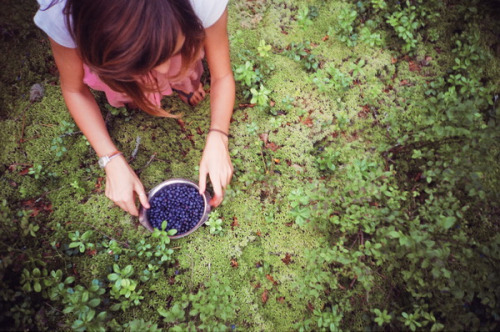 ourwildways:  untitled by plakka on Flickr. berry picking.