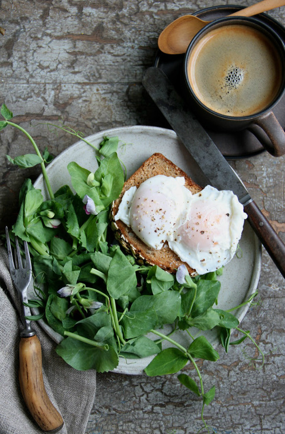 kiyoaki:  (vía poached guinea eggs and pea shoots « margaretandjoy)