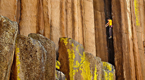 themorningnews:  Alex Honnold becomes first to solo climb Yosemite's three biggest rock faces in less than a day.   Of course he is. Get it!