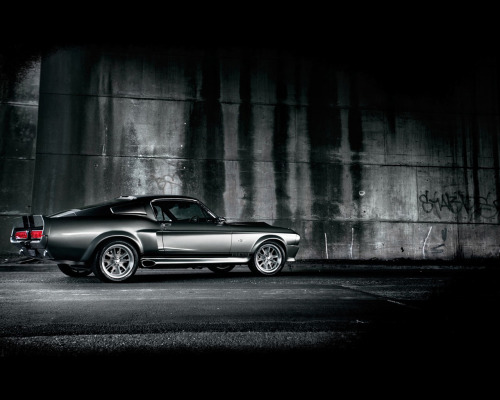 wesleyturtlepower:  Mustang Shelby 1967 GT500