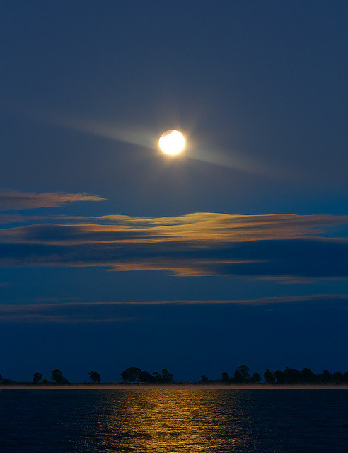 spacettf:  Eclipse at Chascomus by lrargerich on Flickr.