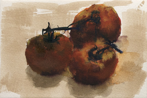 Tomatoes on vine (2), watercolor, 140 lb. cold pressed paper, 4 x 6 inches, 2012 $35, domestic USPS shipping and handling included in price. Click Shipping Details for UPS shipping. Transactions accepted via PayPal, please contact the artist.