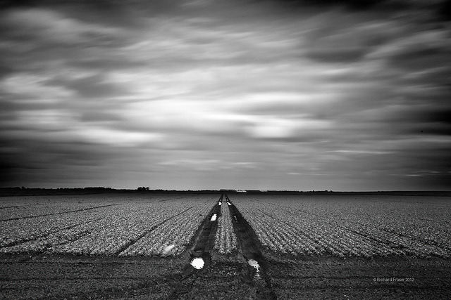Fen, Cambridgeshire, UK by Richard:Fraser on Flickr.
