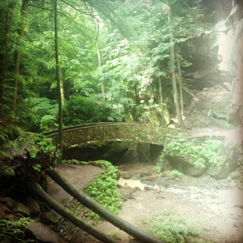 #hockinghills #logan #ohio #hiking #pretty #bridge #oldmanscave #hockinghills #nature #beautiful #scenic #charming #rock #trees #plants #igdaily #photooftheday #picoftheday #instagood (Taken with Instagram at Old Man's Cave)