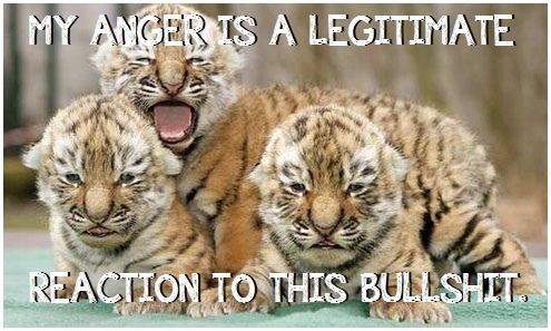 "anti-oppressivebabyanimals:  [IMAGE DESCRIPTION: THREE TIGER CUBS SIT WITH SCOWLS, ONE WITH MOUTH OPEN TO SHOUT DOWN ALL THE OPPRESSIVE BULLSHIT THAT HAPPENS DAILY. TEXT READS, ""MY ANGER IS A LEGITIMATE REACTION TO THIS BULLSHIT.""]  I love this blog. So much."