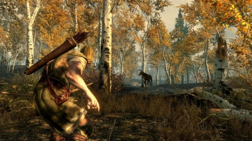 God, I love archery in Skyrim…