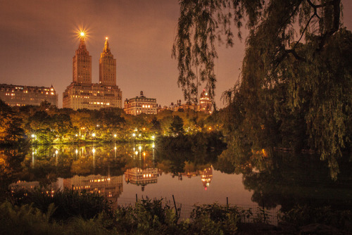 Central Park Night June 2012-4 by Central Park Conservancy on Flickr.Central Park Night