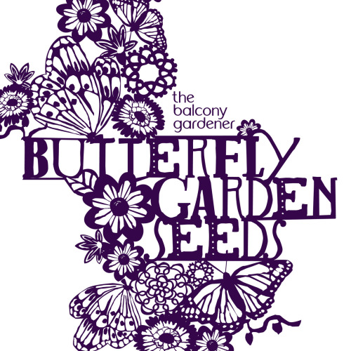 Limited Edition Seed Packet Illustration. (by Chloe Dunne Design)