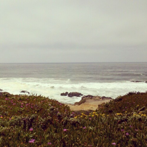 West Coast (Taken with Instagram)