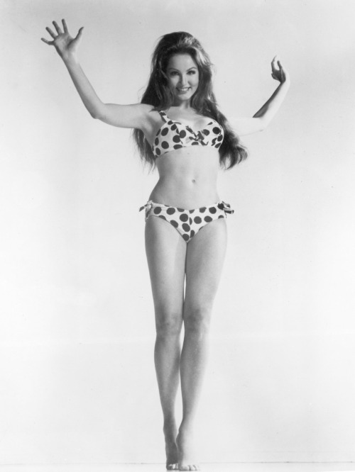 retrogasm:  Julie Newmar