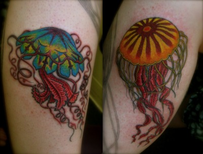 A couple of jellyfish I did a little while back.  I love doing natural history subject matter!  You can see more stuff at the links below: http://purplepanthertattoo.tumblr.com/ http://www.purplepanthertattoos.com/