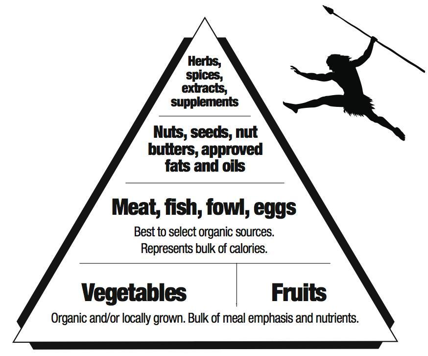 yoga-body:  killfatme:  Primal food pyramid  This would suit me well.
