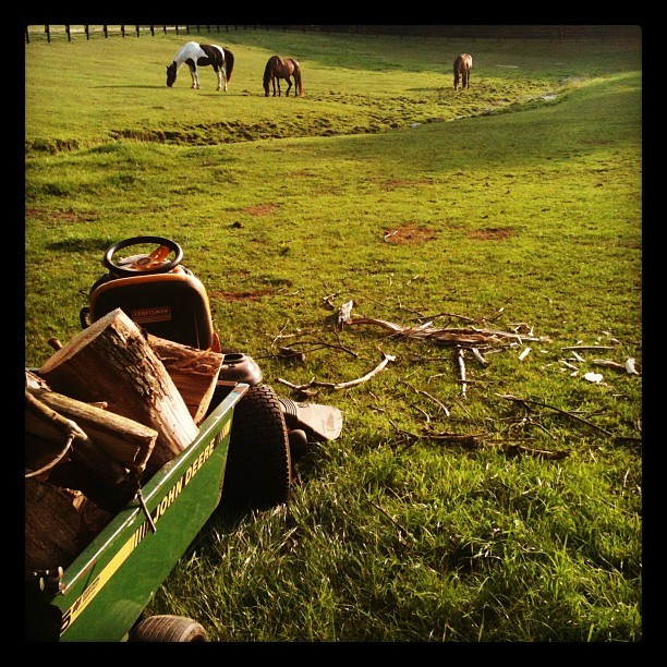 Home on the range (Taken with Instagram)