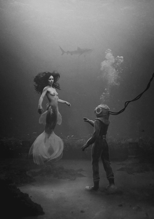amorsexus:  diving bell / shark / mermaid