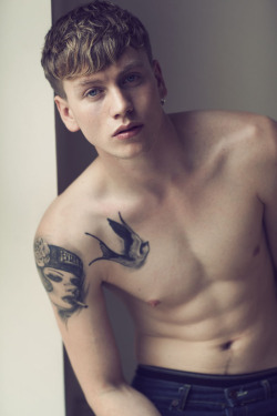 tobeatiger:  Sid Ellisdon by Cecilie Harris Thanks pretty-distracting ;)