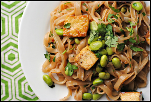 Dinner: Spicy Sesame-Soy Rice Noodles with Tofu and Edamame     http://www.preventionrd.com/2012/06/spicy-sesame-soy-rice-noodles-with-tofu-and-edamame/