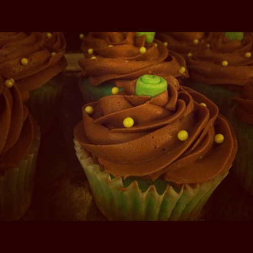 Turquoise cupcakes with chocolate frosting.. Green fondant mini roses and pearls for decoration!  Pretty simple but they sure were fun to eat! Plus vanilla cupcake is my absolute favorite.