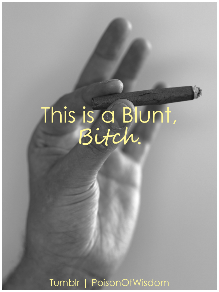 poisonofwisdom:  This is a blunt, Bitch.