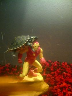 It finally happened… the Turtles attacked Iron Man reblogged from turtlefeed