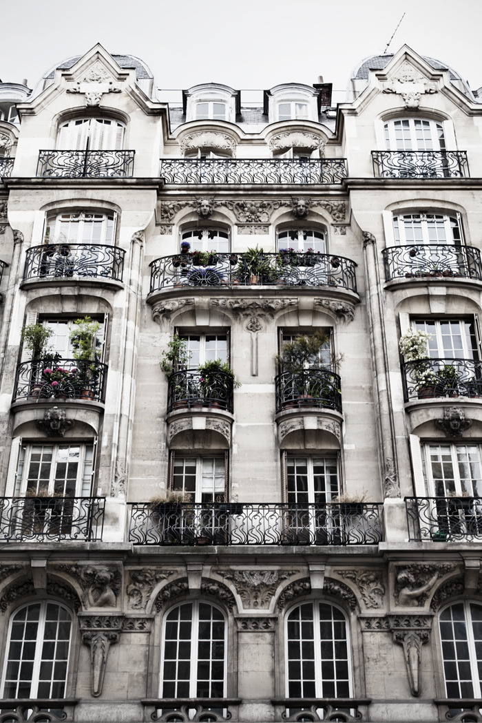 "theviiiiiiiiiiisual:  ""I know that atmosphere of the Parisian apartment building, with the twin menaces of the concierge on the ground floor and the landlord upstairs."" - Roman Polanski"