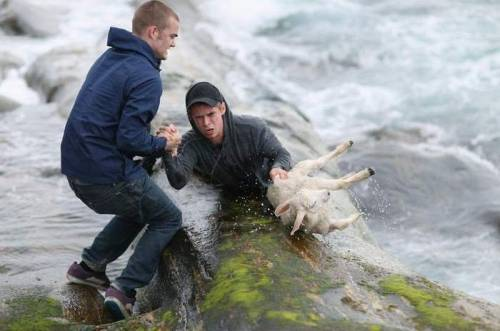These guys are fucking awesome. (via Norwegian guys rescuing a baby lamb | MadPet)