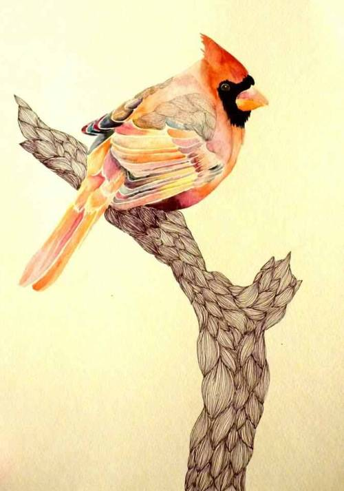 eatsleepdraw:  red robin. watercolor