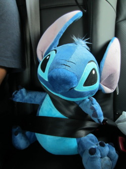 Stitch all buckled up. It's the law.