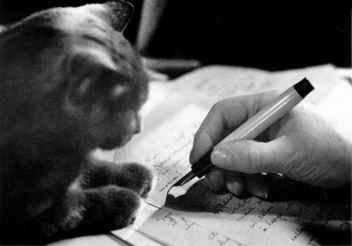 Colette writing.  The company you keep, the size of their whiskers.
