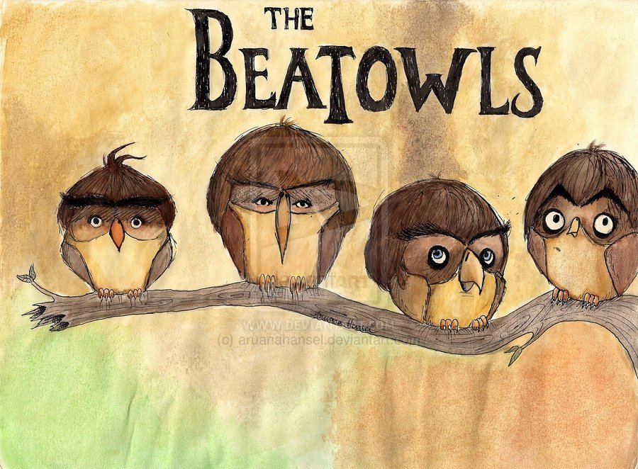 The Beatowls by ~aruanahansel