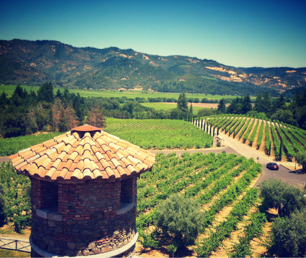 Location scouting in Napa today.