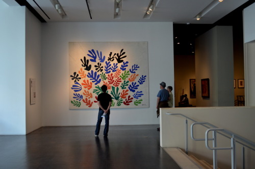 observing the matisse