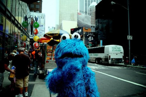 Photo Courtesy Of: Samantha BonnelA very expressive Cookie Monster amid the bustle of Times Square.—Daisy